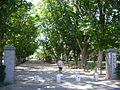 Sanrizuka-park,old-sanrizuka-goryou-farm,narita-city,japan.JPG