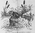 Satterfield cartoon about Theodore Roosevelt as a large frog in a small pond.jpg