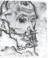 Schiele - Bildnis Franz Hauer.jpg