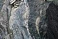 Schist & amphibolite (Ordovician; Marlboro West Route 9 roadcut, Vermont, USA) 1.jpg
