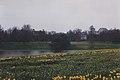 Sefton Park 10.jpg
