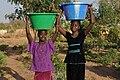 Senegalese women gardeners 4.jpg