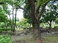 Shiba Park Minata Tokyo August 2014 01.JPG