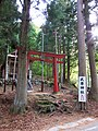 Shrine in Gunma (9047434844) May 2013.jpg