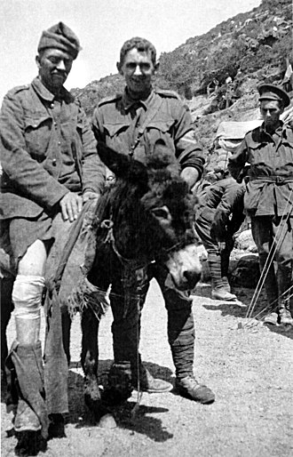 John Simpson Kirkpatrick - Simpson (centre) with his donkey, bearing a wounded soldier.