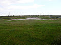 Site of Lydd on Sea Station - geograph.org.uk - 449217.jpg