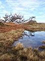 Skelwith, UK - panoramio (3).jpg