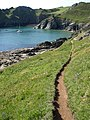 South West Coast Path at Signalhouse Point - geograph.org.uk - 845815.jpg