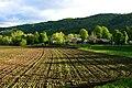 Spring Field in Bethel, Vermont.jpg