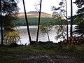 Stacked logs beside Loch Ossian - geograph.org.uk - 265379.jpg