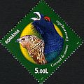 Stamps of Romania, 2011-60.jpg