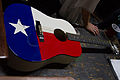 Star and Stripe guitar - Pat Green at Redneck Country Club, 2015-05-30.jpg
