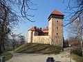Stari grad Dubovac 01023.JPG