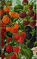 Stark fruits (1896) (20544702465).jpg