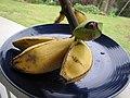 Starr-091112-9621-Musa x paradisiaca-Iholena fruit from Banana Patch LZ-Olinda-Maui (24622116769).jpg