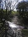 Stream Crossing near Pen-bedw - geograph.org.uk - 354372.jpg