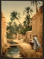 Street in the old town, I, Biskra, Algeria-LCCN2001697849.tif