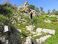 Suba - panoramio (4).jpg