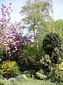 Suburban Garden 3 - geograph.org.uk - 166910.jpg
