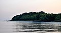 Sundarbans in the afternoon 5.jpg