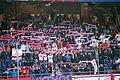 Supporters Red Bull69.jpg