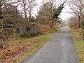 Surviving platelayer hut beside the Mawddach Trail - geograph.org.uk - 1091433.jpg