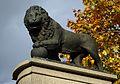 Swedish Lion.jpg