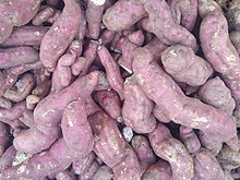 Sweet Potato of Salem.jpg