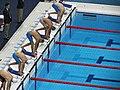 Swimming (7737966730).jpg