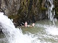 Swimming at the Small Waterfall (3303300404).jpg