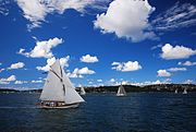 Sydney harbour and sailboats