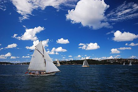 Sailing on Sydney Harbour Sydney harbour and sailboats.jpg