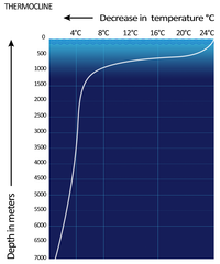 graph showing a tropical ocean thermocline (depth vs  temperature)  note  the rapid change between 100 and 1000 meters  the temperature is nearly  constant