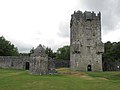 Tag 2 - Tour Connemara - Oughterard - Aughnanure Castle - panoramio.jpg