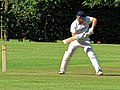 Takeley CC v. South Loughton CC at Takeley, Essex, England 037.jpg