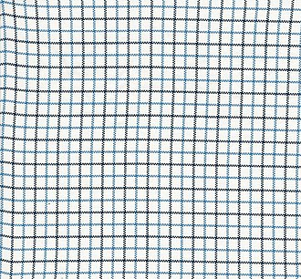 Tattersall (cloth) - Blue and black checked tattersall cotton cloth.