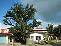 Taysan,Batangasjf9919 18.JPG