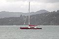 Te Kaihau 1196 (10214632645) (4).jpg