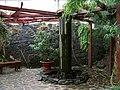 Teplice, skleník Tropicana, subtropický skleník (04).jpg
