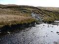 The Afon Conwy - geograph.org.uk - 770922.jpg