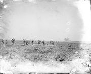The Battle of the Somme, July-november 1916 Q4287