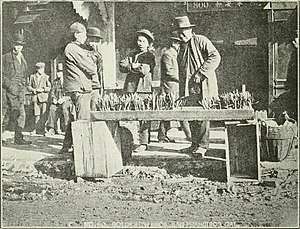 Cantonese people - Cantonese bazaar during Chinese New Year at the Grant Avenue, San Francisco, circa 1914. Names of shops are in Cantonese and there are 4 daily newspapers printed in the Cantonese language at that time, as there is already significant number of Cantonese peoples who have been there for generations.