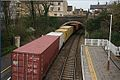 The Hams Hall (Birmingham) to Felixstowe container train at Stamford. - panoramio.jpg