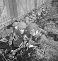 The Home Guard 1939-45 H29023.jpg