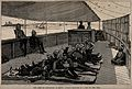 The War in Egypt, Egypt; invalid soldiers on a trip up the N Wellcome V0015354.jpg