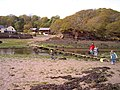 The crab bridge Sandy Haven Pill - geograph.org.uk - 171164.jpg