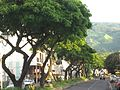 The main drag - Papeete - panoramio.jpg