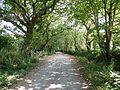 The road to Roundwood Quay. - panoramio.jpg