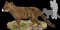 Thylacinus Potens.png
