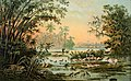 Tierleben am mittleren Orinoco, Anton Goering, MuseumBurgPosterstein.jpg